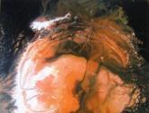 constelación  cabellera de berenice