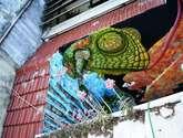 mural, camaleon