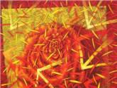 rosso di fiore chiaro i